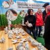 35. Emsdettener Frühjahrsmarkt
